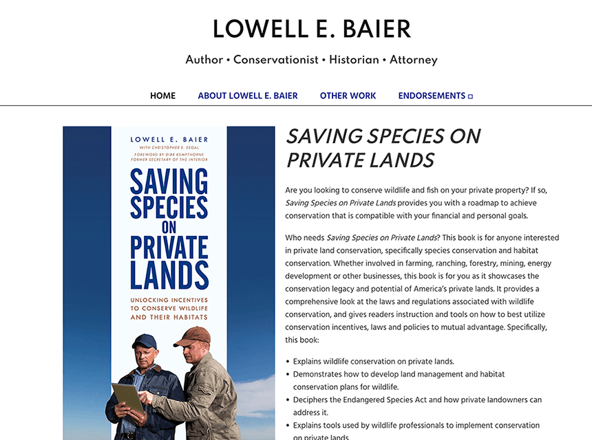 Lowell Baier Website